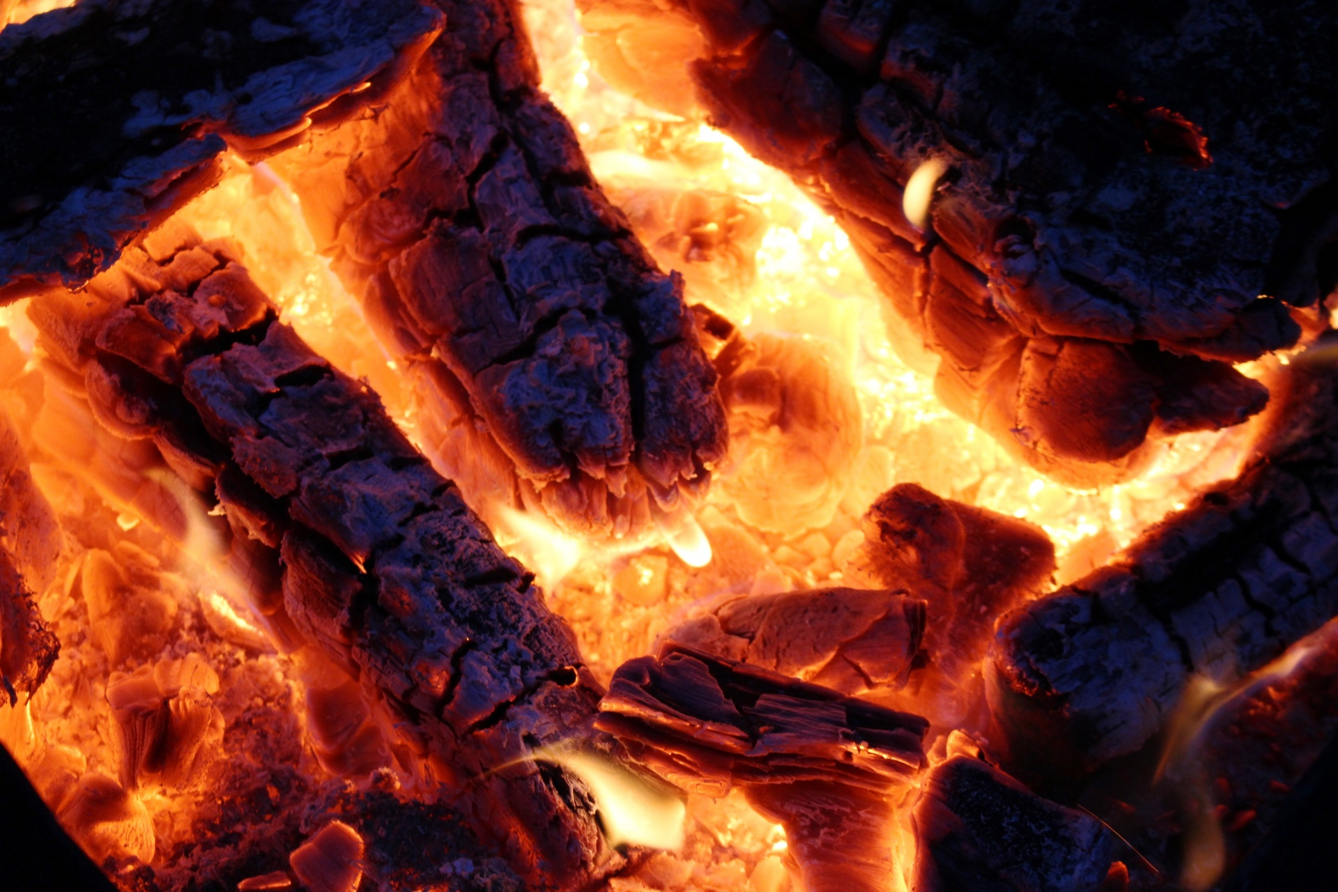 Animated Background Wallpaper Camp Fire And Embers Free Stock Photo Public Domain Pictures