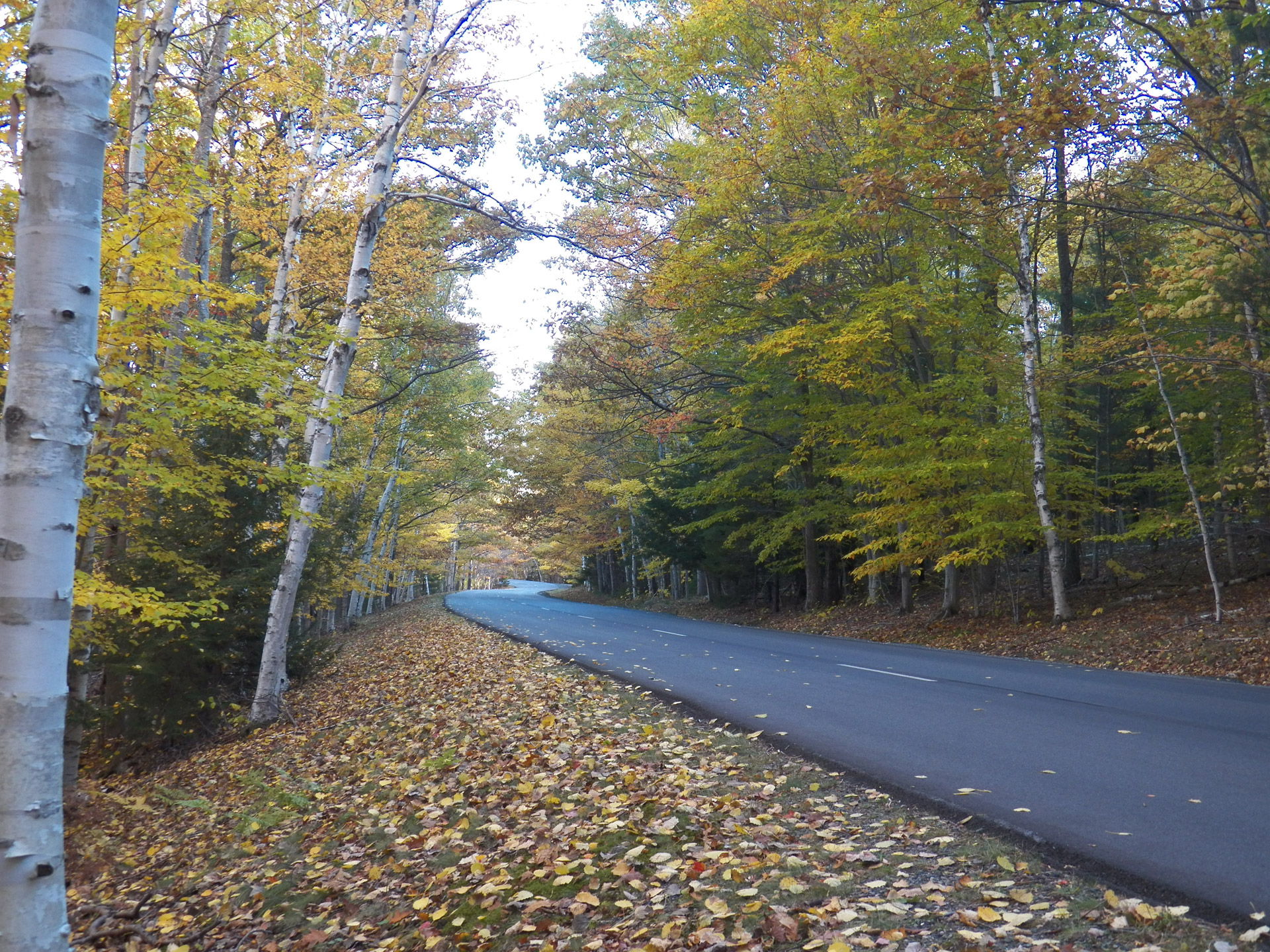 Fall In Maine Wallpaper Country Road Free Stock Photo Public Domain Pictures