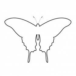 Butterfly Outline Clipart Free Stock Photo Public Domain Pictures