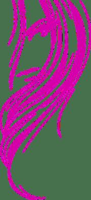 vetor desenho de rosa representa
