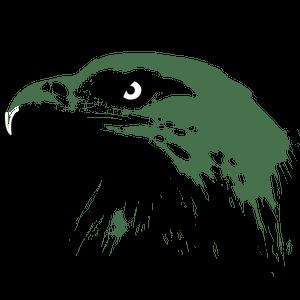 223 elang clipart gratis  Domain publik vektor