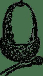 25 Acorn Clip Art Free Public Domain Vectors