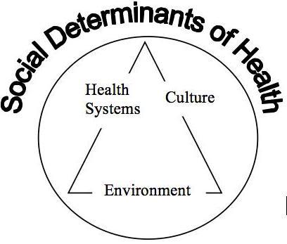 Social Determinants Interrelationship Diagram