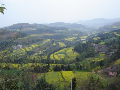 Agricultural fields in China