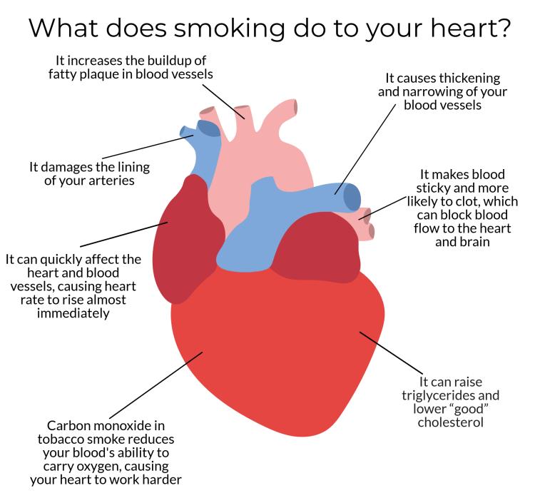 heart for blog 2