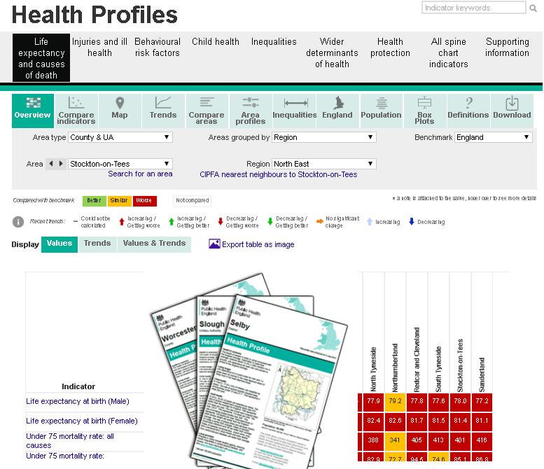 local authority health profiles