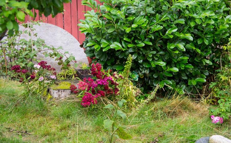 Rainy days Scandinavia4_