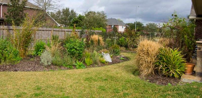 Compare garden from month to month