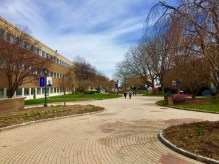 The Pedestrian Mall, complete with a path, benches, and vibrant landscaping, divides Carlson Hall and Mandeville Hall. While both buildings host classes, Carlson is home to the College of Public and International Affairs and Mandeville houses the Trefz School of Business.