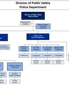 Organizational chart also division of public safety rh publicsafety uconn