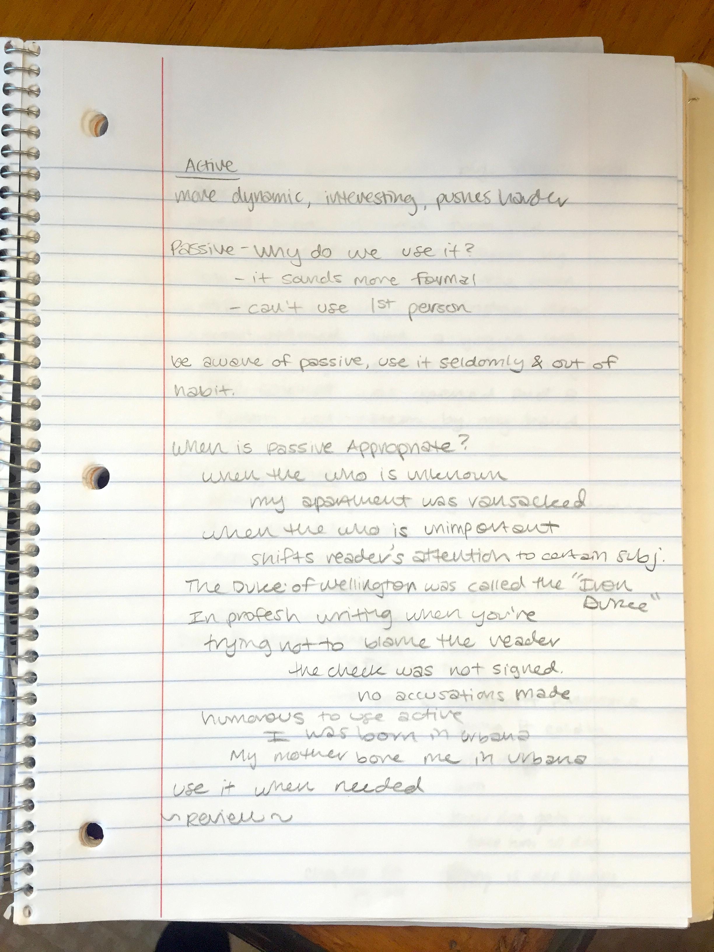 Cannery Row Essay Row Essay Cannery Row What S Happening In English