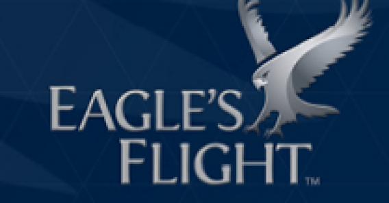 Eagle's Flight