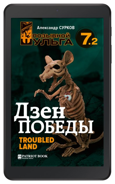 Дзэн победы. Troubled Land (Позывной Шульга-7.2) e-book
