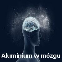 Aluminium w mózgu osób autystycznych – prof. Chris Exley
