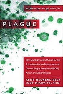 The Plague - Judy Mikovits