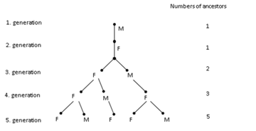 Common and Flexible Use of Mathematical Non Routine