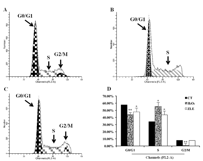 Antioxidant and Cytoprotective Activities of Flavonoid