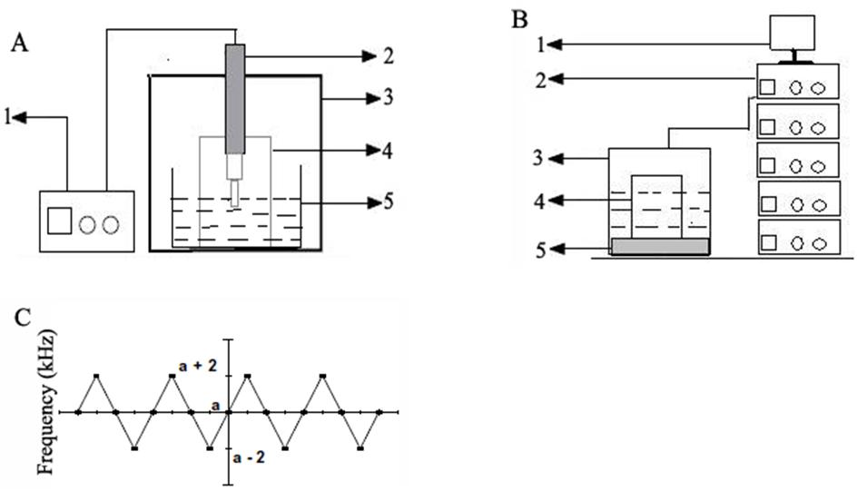 Figure 1. (A–C) (A) Schematic diagram of probe ultrasound