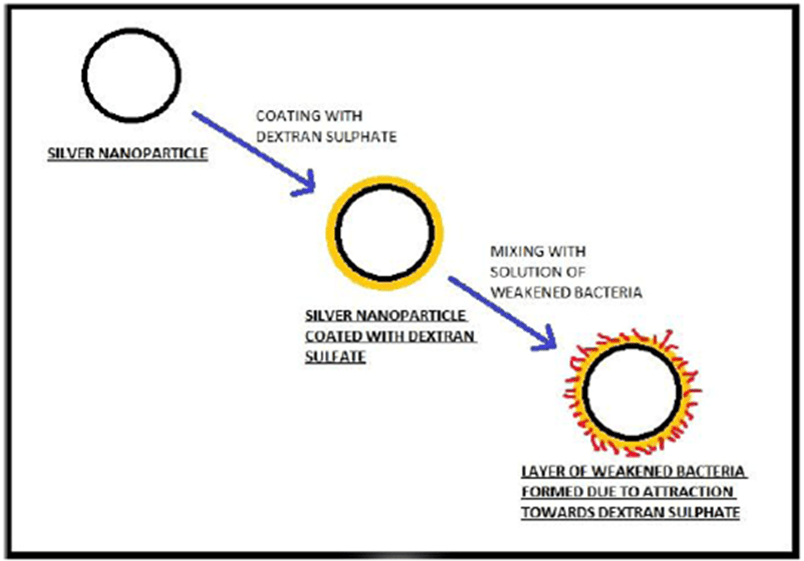 A Novel Biophysical Technique for Treatment of Leukopenia