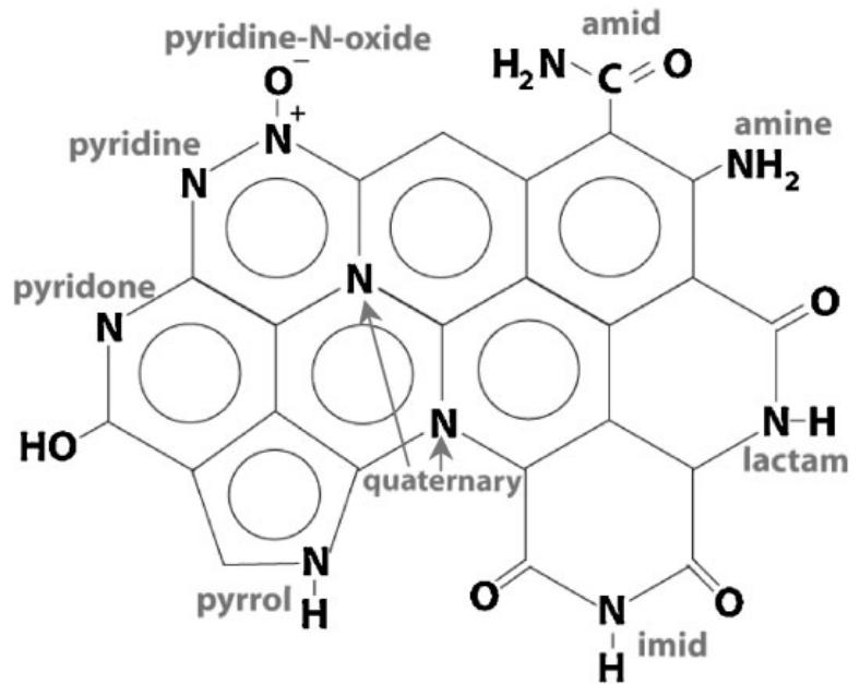 Nanoporous Nitrogen-containing Coal for Electrodes of