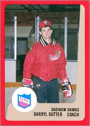 1988-89 ProCards AHL/IHL - Darryl Sutter