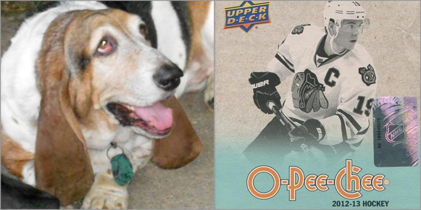 Dog vs. Cards...and another OPC break