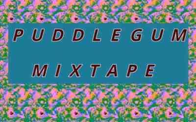 Puddlegum Mixtape: tape eight