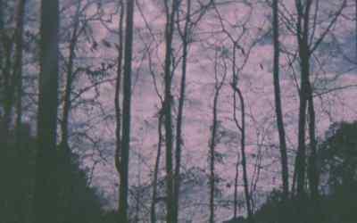 Matt Messore on Cathedral Bells new album, 'Ether'