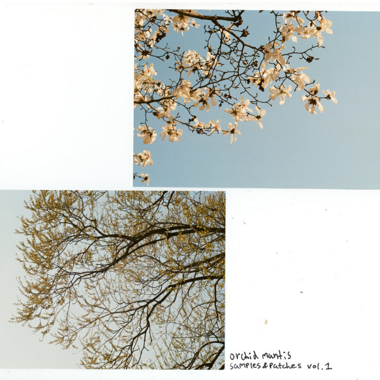 Orchid Mantis - 'Samples & Patches - Vol. 1'
