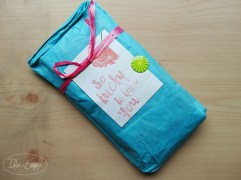 Photo - June 2016 - Incoming - Pocket Letter and Surprises (2)