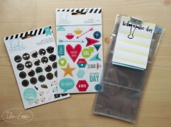Photo - June 2016 - Incoming - Pocket Letter and Surprises (3)