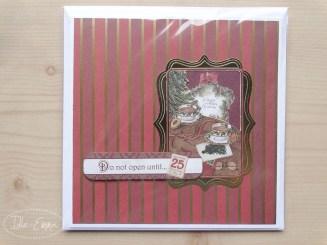 photo-christmas-cards-2016-26