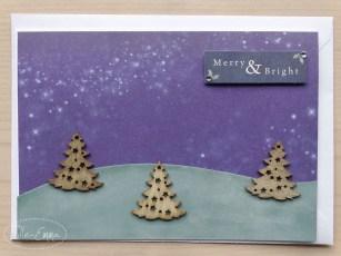 photo-christmas-cards-2016-9