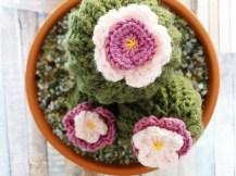 photo-crochet-cactus-3