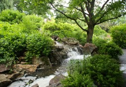 Lower falls of the water garden