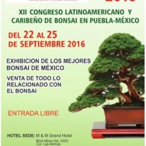 XXII Congreso Internacional de Bonsai FELAB 2016