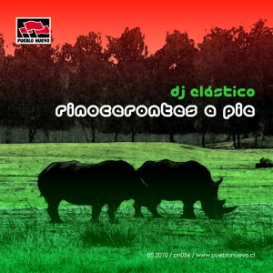pn056 Rinocerontes a Pie