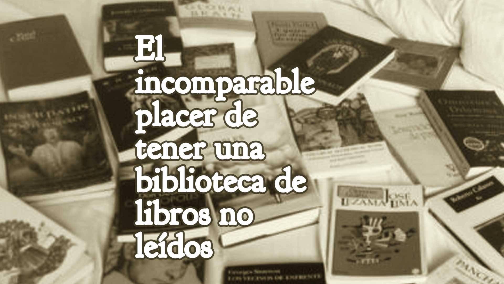 El incomparable placer de tener una biblioteca de libros no leídos