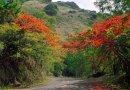 Cuenta una historia la olvidada ruta de La Piquiña