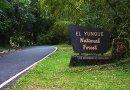 El Yunque estará cerrado hasta nuevo aviso