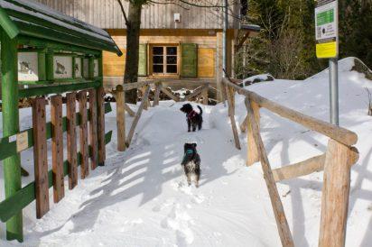 ciekawi mnie na jakich zasadach funkcjonuje Domek Myśliwski w czasie , kiedy nie jest przysypany śniegiem