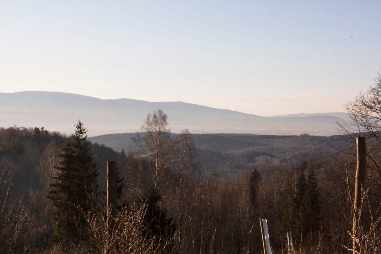 Fajnie, nie? Dla takiego widoku kiedy wychodzę z sukami na poranny sik warto przyjechać. Jednak jest coś w górach, że nawet kilku minutowy spacer fizjologiczny nabiera niezwyłekgo klimatu.