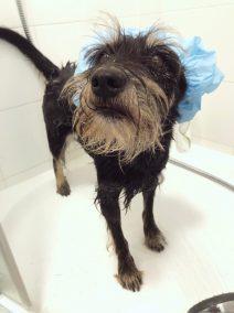 Dobrze, że ona lubi się kąpać.