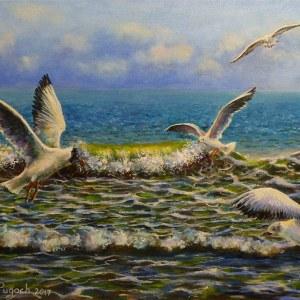Чайки в море картина маслом