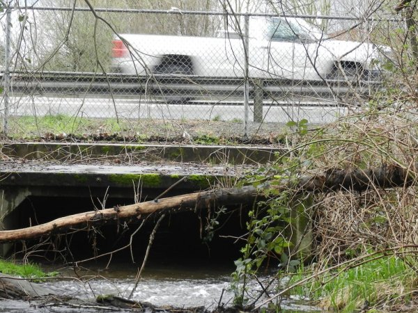 A vehicle travels on the highway where a creek runs underneath.