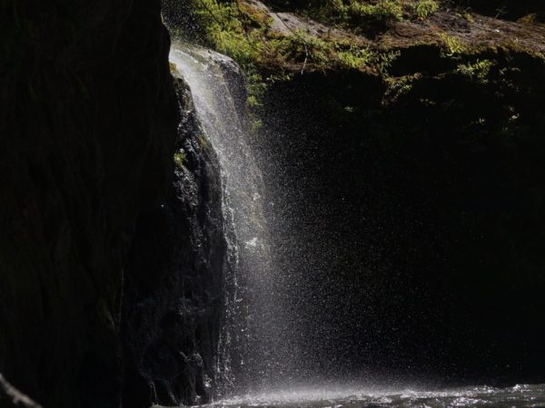 A waterfall on the Elwha River.