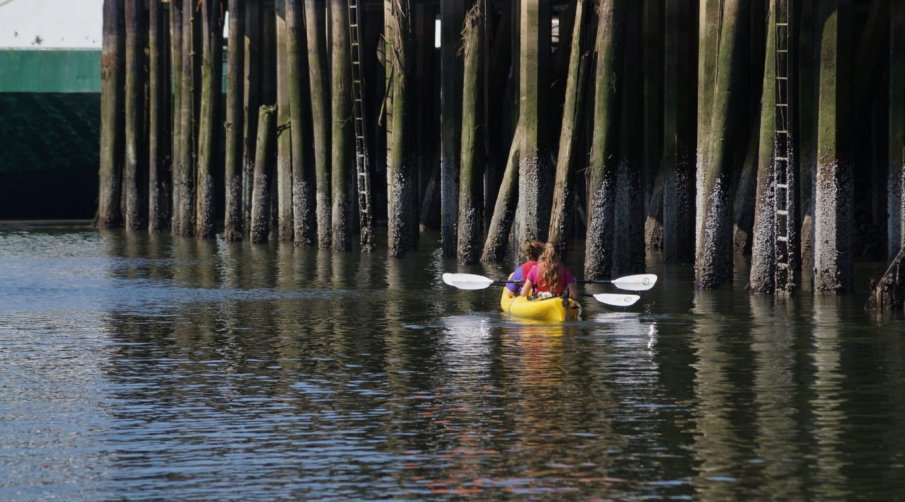 Kayakers on the Duwamish River.