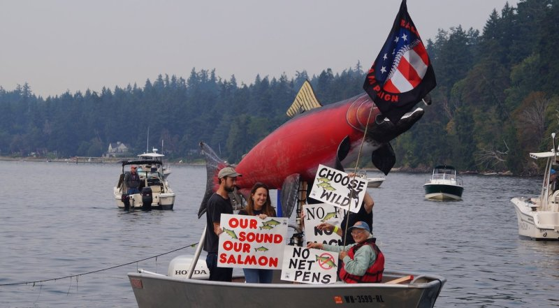 Protesters hold signs on a fishing boat during a flotilla to protest Atlantic Salmon net pens in Puget Sound.