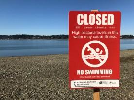 "close up of a ""Closed No Swimming"" sign at a local beach."