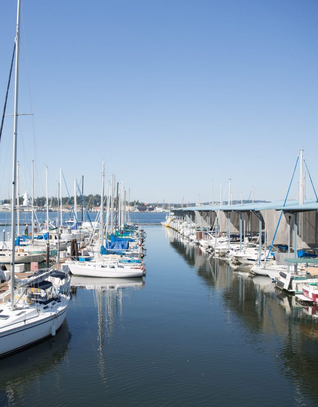 Port Orchard Boats - Puget Sound Veterinary Specialists